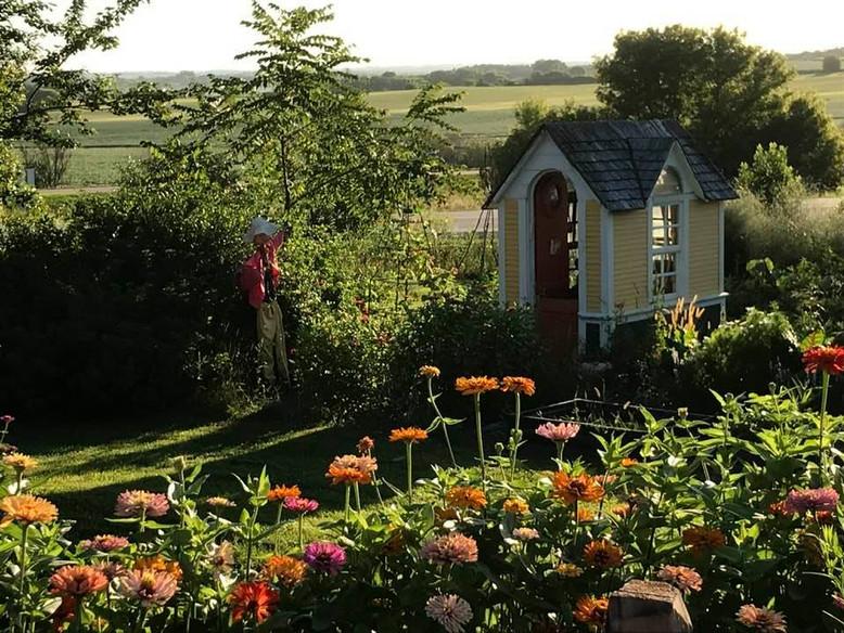 gardenm shed summer.jpg