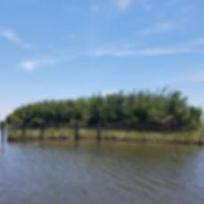 Bayou Bienvenue Fort