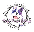 Unique French Bulldogs