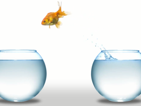 Feel like a fish out of water over what to do with regards to the latest base rate rises?