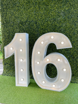 Light up 16 with our Green Boxwood Wall