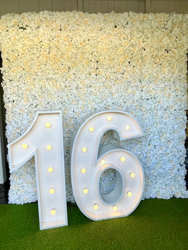 Light up 16 with our White and Cream Flower Wall