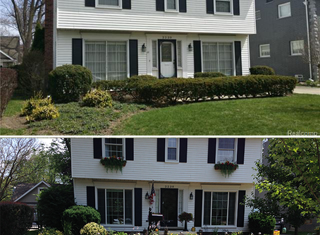 Curb Appeal Update