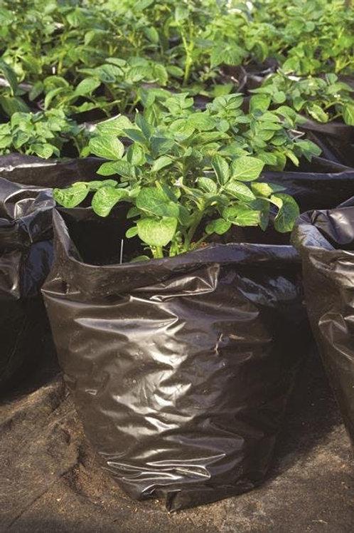 Instant Potato Garden