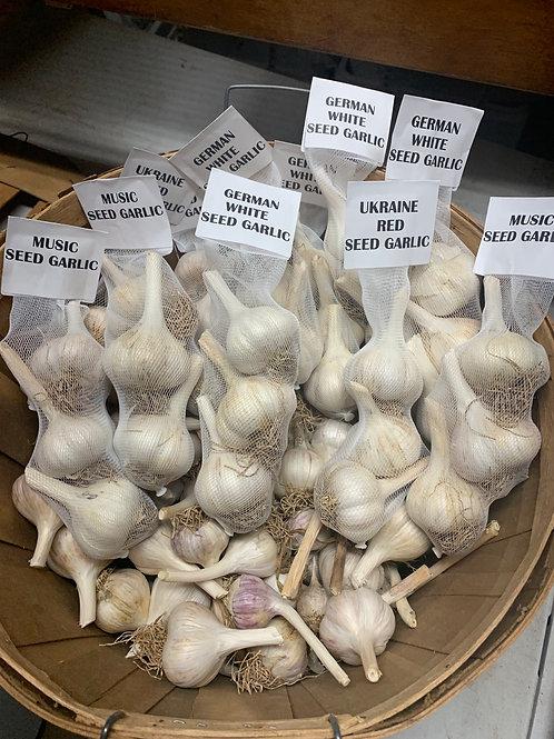 Heirloom Seed Garlic