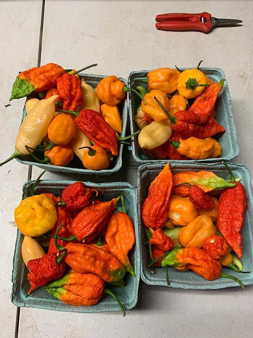 Super Hot Peppers - Quart Mixed