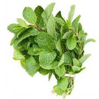 Mint (fresh, bunched)