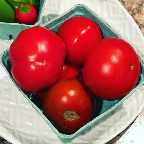 Tomato Seedlings (Slicers)