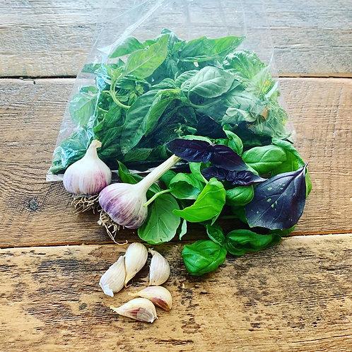 Pesto Pack (Basil, Garlic)
