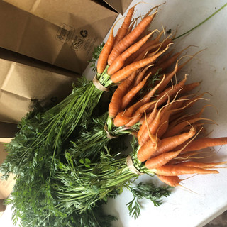 carrots with tops.jpg