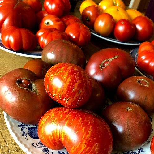Tomatoes (Heirloom beefsteak, each)