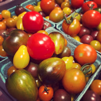 Tomato Seedlings (Cherry)