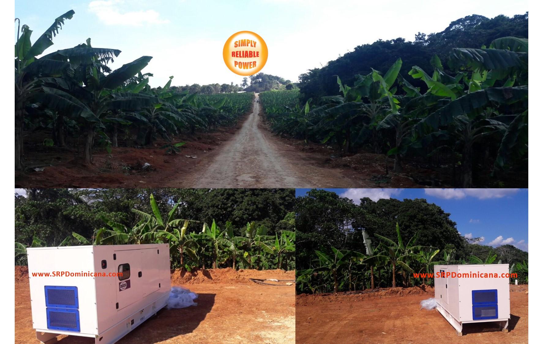 Granjas de Cacao en Rep Dominicana