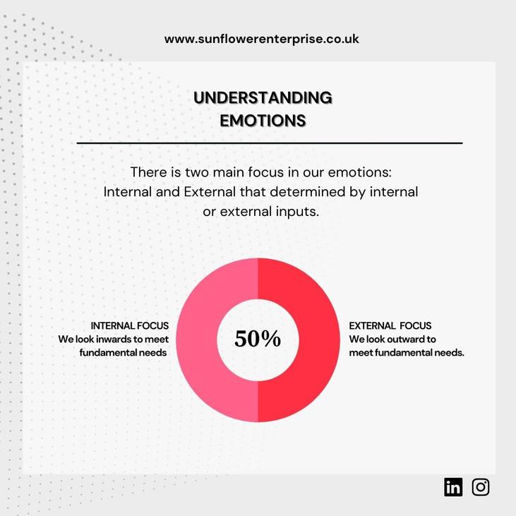 UNDERSTANDING EMOTIONS 2.jpeg