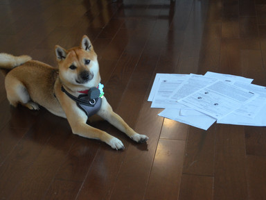 Roscoe with Closing paperwork