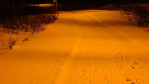 Ta fram skian