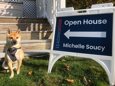 Roscoe with Open House Sign