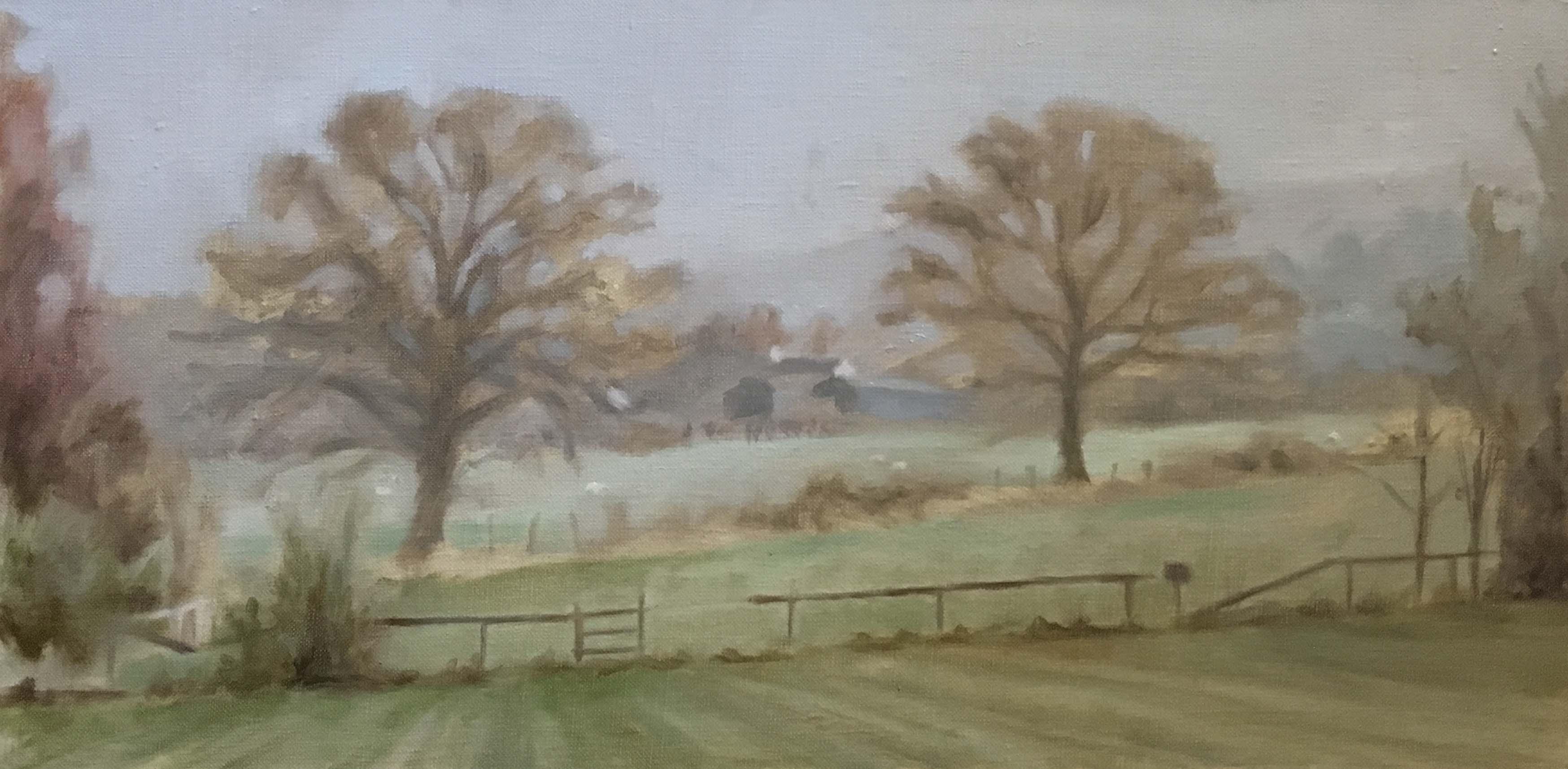 Cwmdu Fields