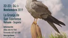 SIECE participa en el XV Congreso del Grupo Ibérico de Aguiluchos