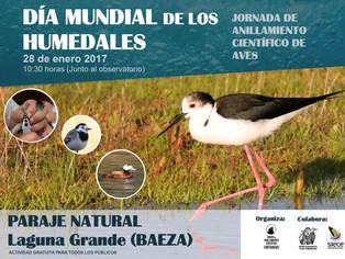 Celebración Día Mundial de los Humedales en Laguna Grande (Baeza)