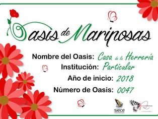 Nuevo OASIS DE MARIPOSAS en Cuenca