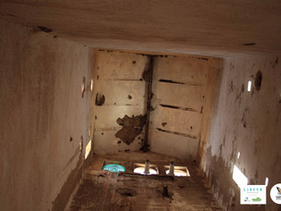 PROYECTO LIBERA: Rehabilitación del tejado y realización de huecos para nidales.