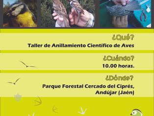¡Celebra con nosotros el Día Mundial de las Aves!