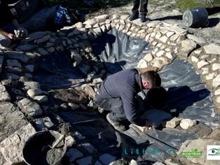 Proyecto Libera: una nueva charca para anfibios en un olivar de JAÉN