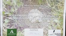 RECIBIMOS EL RECONOCIMIENTO POR LA LABOR DE CONSERVACIÓN DEL AGUILUCHO CENIZO