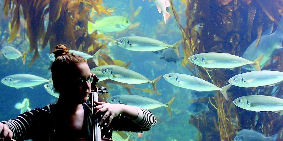 Immersion @ Birch Aquarium