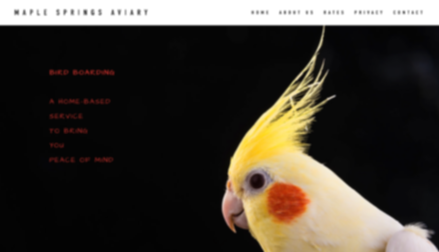 Maple Springs Aviary for Web Design by Dena Testa Bray