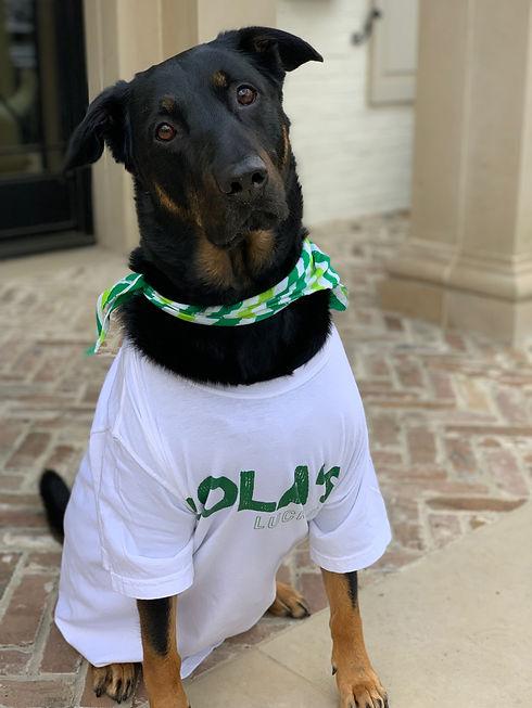 Lola Namesake To Lola's Lucky Day