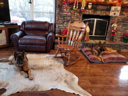 He and Reba At Fireplace