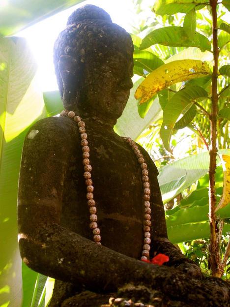 Buddha, Anne Bergeron