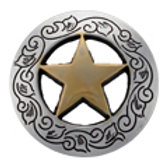 Engraved Ranger Star Concho
