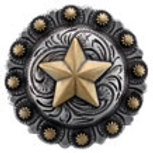Silver/Gold Star Berry Concho