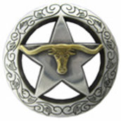 Engraved Longhorn Star Concho
