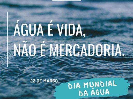 22 de março, dia mundial da água, um dia para reflexão!
