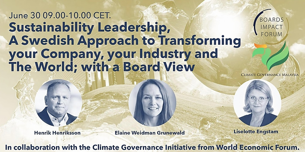 Sustainability Leadership, A Swedish Approach to Transforming your Company, your Industry and The World; with Board View