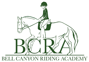 BCRA Logo - solid bg.png