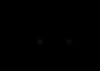 FV-MONO-01.png