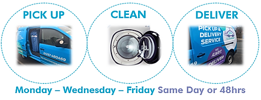 Pick up clean deliver circles .png