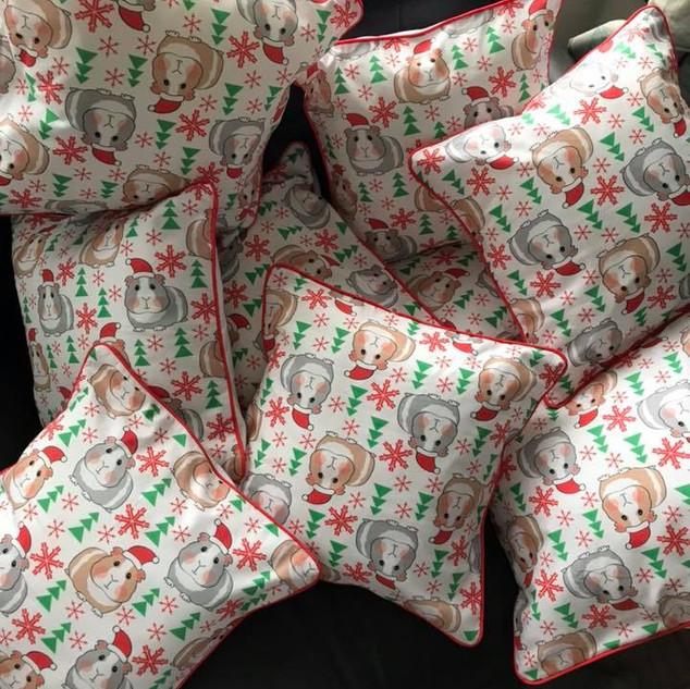 ruth rags cushions.jpg