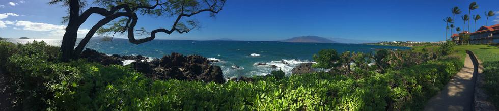 Wailea-Beach-Path-Maui.jpg