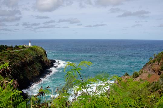 hawaii (26 of 41).jpg