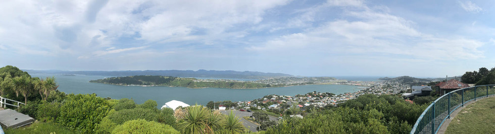 View-Wellington-New-Zealand.jpg