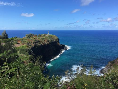 hawaii (9 of 41).jpg