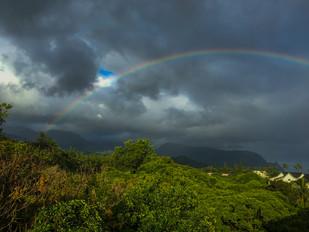 hawaii (7 of 41).jpg
