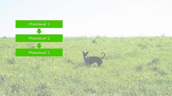 Bild KURSE Homepage .jpg