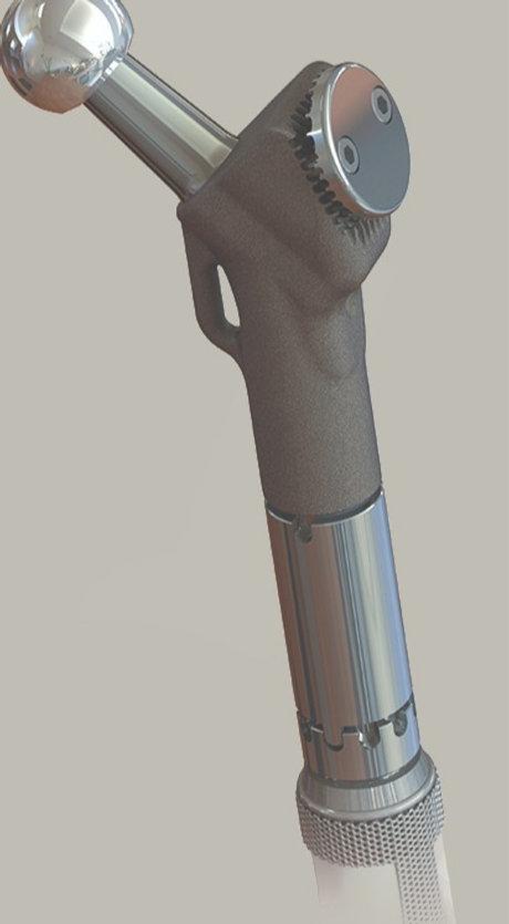 Proximal Femur